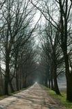 Long chemin sans fin Image stock