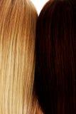 Long cheveu coiffure Salon de coiffure Femme avec les cheveux sains Photographie stock