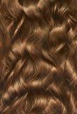 Long cheveu de femme Photographie stock libre de droits