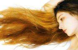 Long cheveu rougeoyant Images libres de droits