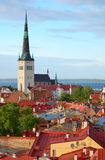 A long church in old Tallinn. Red roofs and church Oleviste of old Tallinn Stock Photography