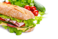 Long Ciabatta Sandwich Stock Images