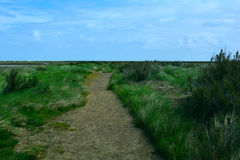 Long coastal walk / path near the beach, Blakeney Point, Norfolk,  United Kingdom. The Norfolk Coast Area of Outstanding Natural Beauty is a protected landscape Stock Image