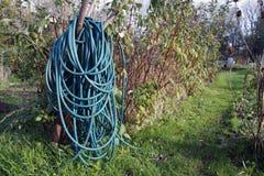 Long coiled water hose Stock Photos
