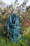 Long coiled water hose Royalty Free Stock Photography