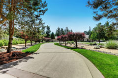 Long concrete driveway of American luxury house Royalty Free Stock Image