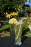 Long cool summer drink Stock Photo