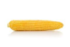 Long Corn Cob on white background Royalty Free Stock Photos
