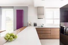 Long counter in spacious kitchen Stock Photos