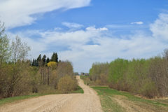 Long country road Royalty Free Stock Images