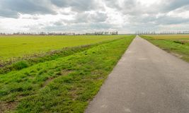 Long country road in a rural landscape. Seemingly endless country road in an agricultural landscape with fresh green grass next to ditches in a Dutch polder. It Stock Photography
