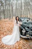 Long coup noir de boucles du bride& x27 ; tête de s Images libres de droits