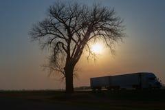 Long-courrier au coucher du soleil photo stock
