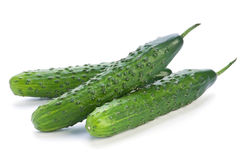 Long cucumber Stock Photos