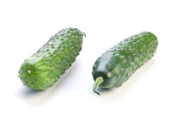 Long cucumber Royalty Free Stock Photography