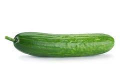 Long cucumber on white Stock Photo