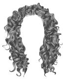 Long curly hairs gray colors  .  beauty fashion style wig . Stock Images