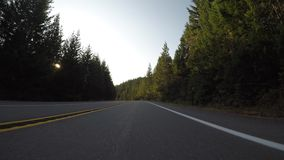 Long Curve into Bright Sun. In Washington stock video footage