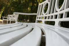 Long curved row of white park benches Stock Images