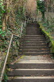 Long Curving Alley Staircase Outdoors Plants Tight Steep Handrai Stock Images