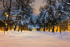Long decorated alley in Tallinn, Estonia. Long snowy alley between two enlightened streets where trees are decorated with Christmas lights on a slightly cloudy Royalty Free Stock Image