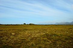 Long deep field near seashore with blue summer sky. Background Royalty Free Stock Photography