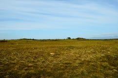 Long deep field near seashore with blue summer sky. Backdrop Stock Image