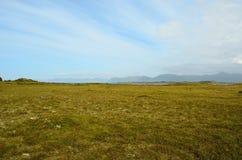 Long deep field near seashore with blue summer sky. View Stock Photos