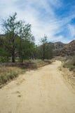 Long Dirt Road through California Stock Photography