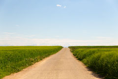 Long dirt road through fields Stock Photos