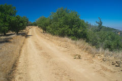 Long Dirt Wilderness Road Royalty Free Stock Photos