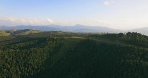 Long distance nature mountain green tree forest landscape, aerial view. 4k. Resolution stock video footage