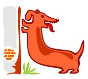 Long dog Royalty Free Stock Photography