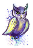 Long-eared owl in purple colors on a white background Royalty Free Stock Images
