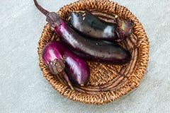 Long Eggplants or Brinjal Royalty Free Stock Image