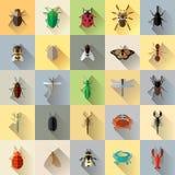 Long ensemble d'insecte d'insecte d'ombre de vecteur image libre de droits