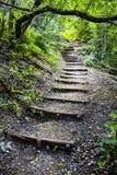 Long escalier en bois photographie stock libre de droits