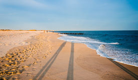 Long evening shadows on the beach at Cape May, New Jersey. Royalty Free Stock Photo