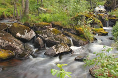 Long exposure of a creek Royalty Free Stock Photos