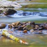 Long exposure creek Stock Photography