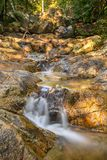 The long exposure image of a beautiful stream Royalty Free Stock Photo
