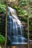 Lust Forest Waterfall Long Exposure royalty free stock images