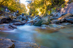 Long Exposure image of a Waterfall in Lush Temperate Rainforest on the West Coast of New Zealand Royalty Free Stock Photos