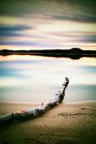 Long exposure landscape of lake shore with dead trunk fallen into water Stock Images