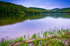 Long exposure of Long Pine Run Reservoir in Michaux State Forest Royalty Free Stock Photo