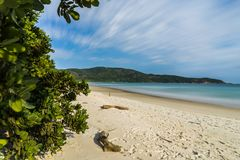 Free Long Exposure Lopes Mendes Beach In Ilha Grande South Of Rio De Royalty Free Stock Photo - 123781785