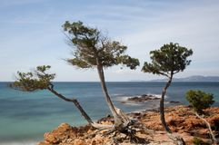 Long exposure of Palombaggia. The beach of Palombaggia in the southern coast of Corsica is one of the island's finest and most popular Royalty Free Stock Photography
