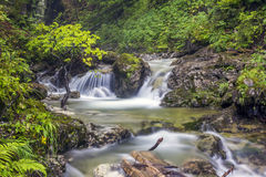 Long Exposure Photo Of A Mountain river Royalty Free Stock Image