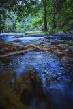 Long exposure photography of natural water steam in deep forest Royalty Free Stock Photos