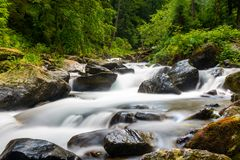 Long exposure on river flowing through rocks and spring green forest. Small river flowing through stones and rocks in wild Fagaras mountains, Romania, Europe royalty free stock photography